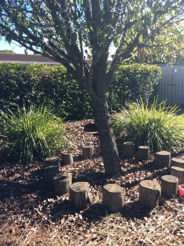 Little Miracles Community Kindergarten Toowoomba Playground Trees